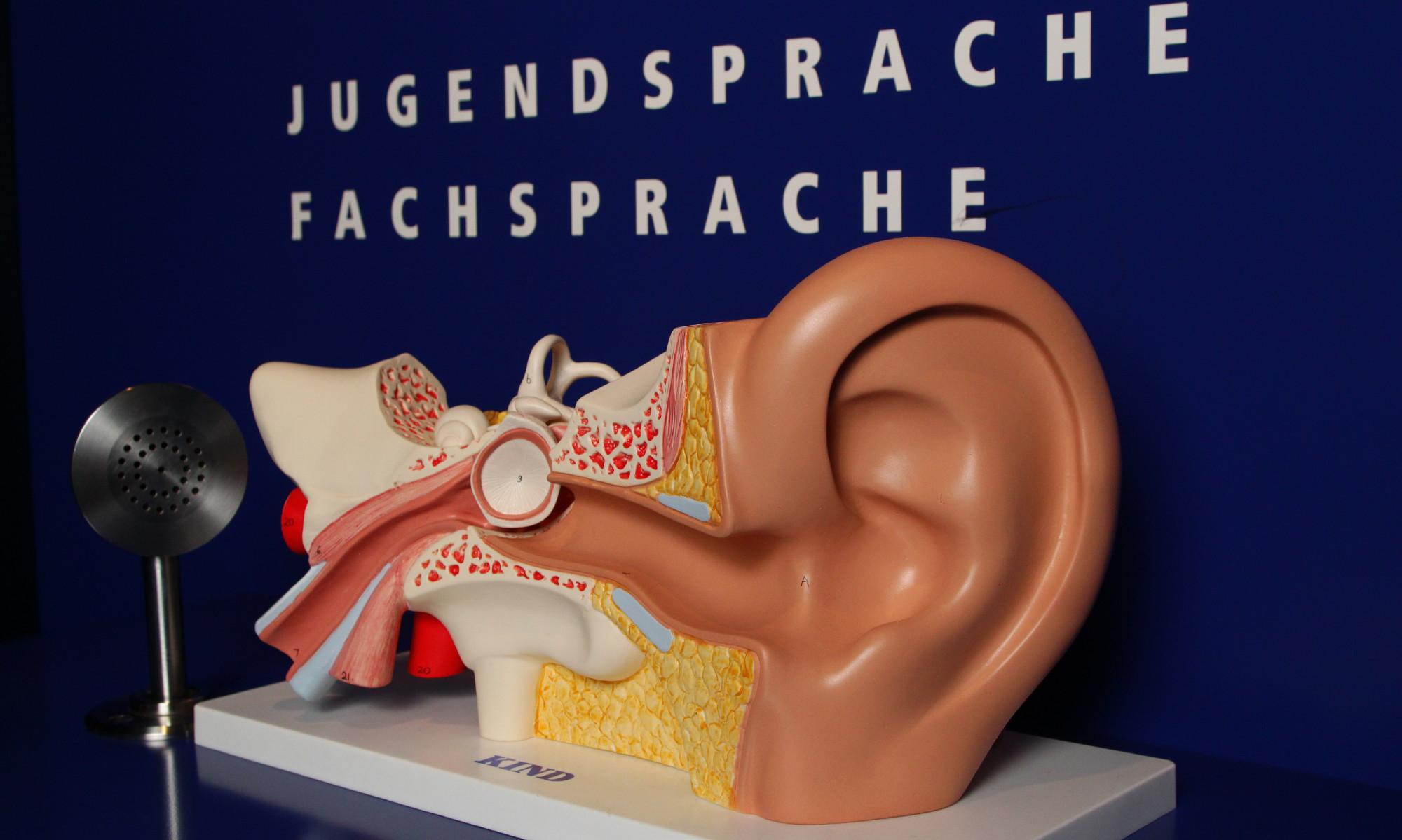 Hör mal - Grundschule, Museum für Kommunikation Nürnberg